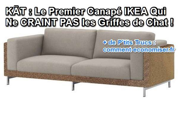 k t le premier canap ikea qui ne craint pas les griffes de chat. Black Bedroom Furniture Sets. Home Design Ideas