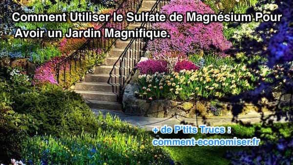 Pourquoi utiliser le sulfate de magnésium dans votre jardin ?