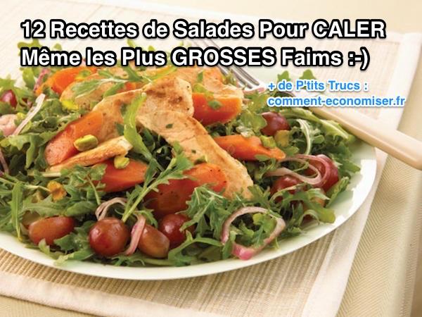 Quelles sont les meilleures recettes de salades à moins de 400 calories ?