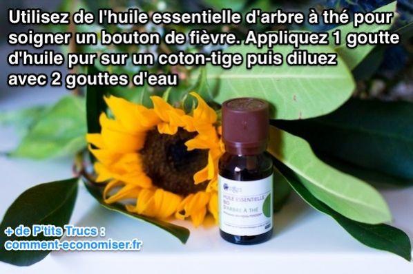 Utilisez de l'arbre à thé pour soigner un bouton de fièvre