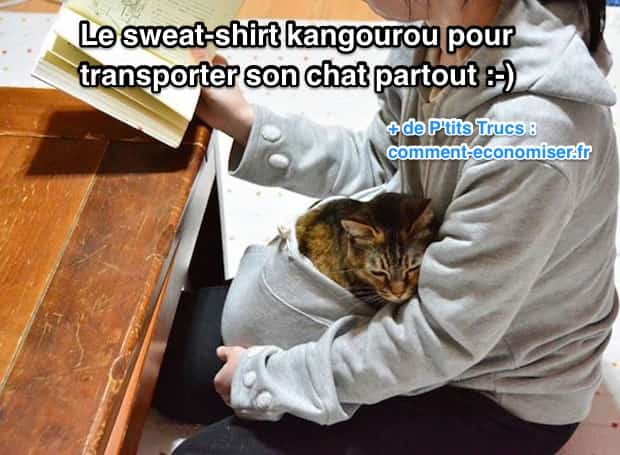 produit malin le sweat shirt kangourou pour transporter son chat partout. Black Bedroom Furniture Sets. Home Design Ideas