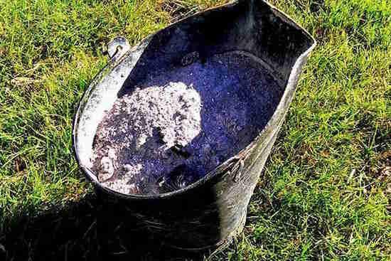 Saupoudrez la cendre de bois sur la pelouse