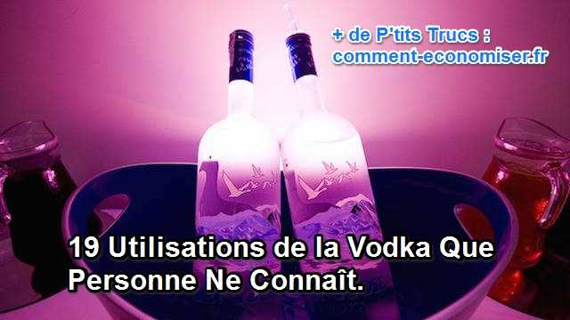 Comment peut-on utiliser la vodka à la maison ?