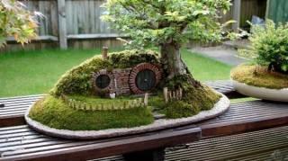 14 jardins féériques miniatures maison