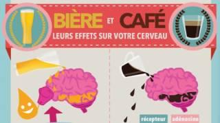 Effets secondaires de la bière et du café sur le cerveau