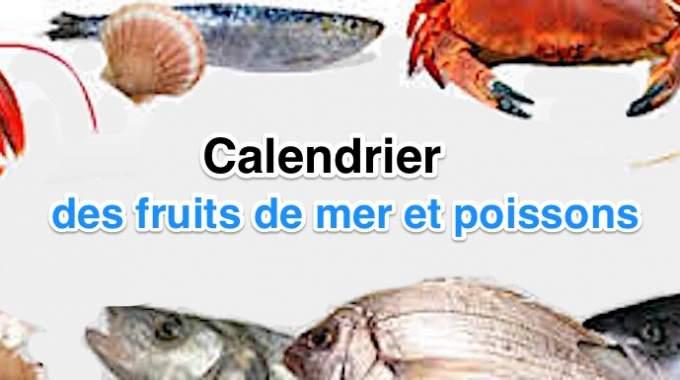 Calendrier Des Poissons Et Fruits De Mer De Saison.Le Calendrier Pour Payer Moins Cher Poissons Et Fruits De