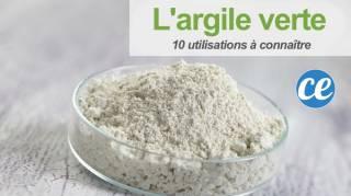 10 Utilisations de l'Argile Verte