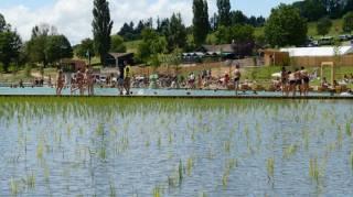 une-piscine-a-filtration-naturelle-en-belgique