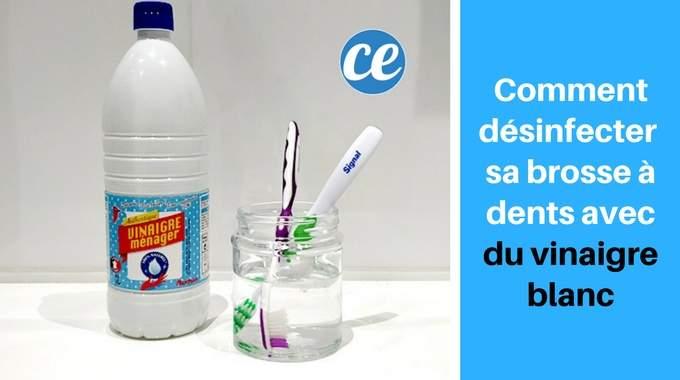 comment d sinfecter et st riliser sa brosse dents avec du vinaigre blanc. Black Bedroom Furniture Sets. Home Design Ideas