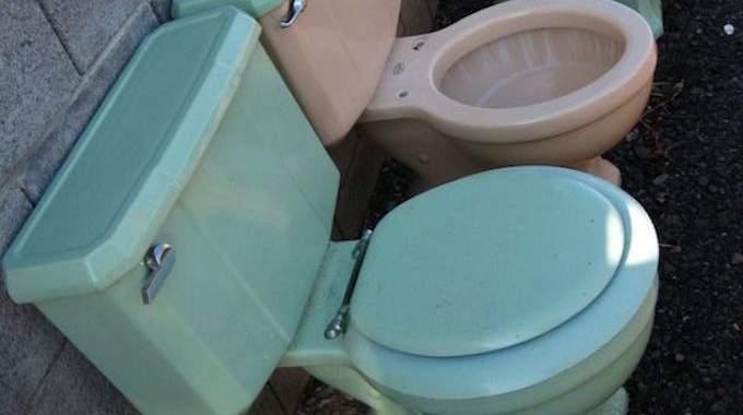Comment j'Enlève le Calcaire des Toilettes avec des Huîtres.