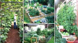 22 idées pour créer des petits jardins potages