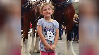 petite fille qui pose devant un cheval qui sourit