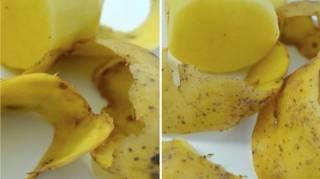 utilisations-epluchures-pommes-de-terre