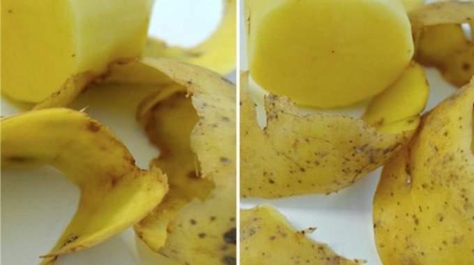 12 Façons Incroyables d'Utiliser les Épluchures de Pommes de Terre.