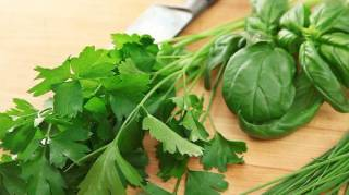 Quelles Herbes Aromatiques Utiliser Dans Vos Plats