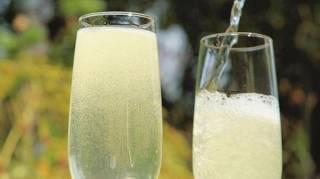 Recette du Champagne Aux Fleurs de Sureau