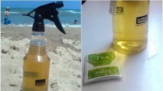 Comment Faire un Spray Hydratant Et Rafraîchissant Pour le Visage