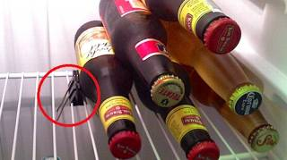 comment ranger les bières dans le frigo