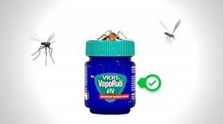 Comment Utiliser du Vicks VapoRub Comme Répulsif à Moustiques