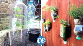 recycler les bouteilles en plastique pour le jardin