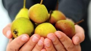 les fruits et les légumes de saison du mois de septembre