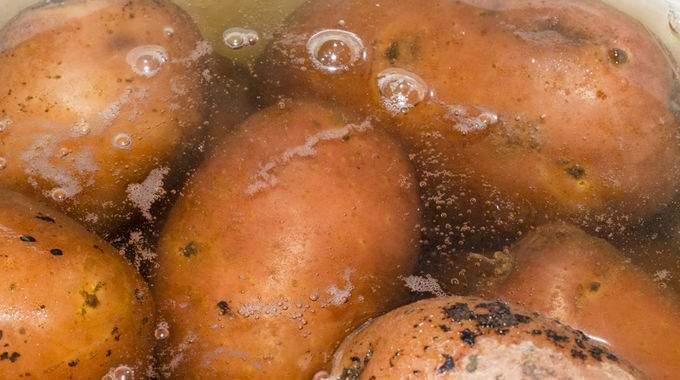 4 Utilisations de l'Eau de Cuisson des Pommes de Terre Que Tout le Monde Devrait Connaître.