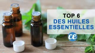 6 Meilleures Huiles Essentielles à TOUJOURS Avoir Dans Sa Pharmacie