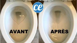 astuce-pour-detartrer-la-cuvette-des-toilettes