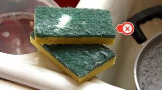 Nettoyer les Éponges Aux Micro-Ondes Ne Fait Qu'Empirer les Choses