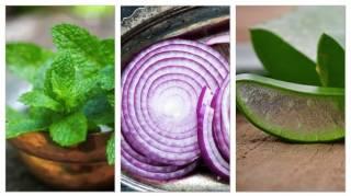 TOP 20 aliments bons pour la santé