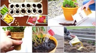 Jardinage : regardez les 18 trucs & astuces ingénieux à connaître ABSOLUMENT :-)