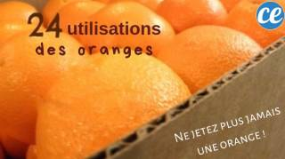 24 utilisations des oranges