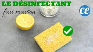 Super Efficace Et 100% Naturel : Le Désinfectant Fait Maison Prêt En 1 Min