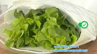 astuce pour conserver la salade fraiche plus longtemps