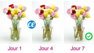 Comment Faire Durer Un Bouquet Plus Longtemps ? L'Astuce De Mon Fleuriste