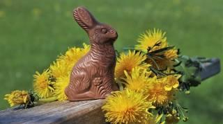 Les Chocolats de Pâques à Moitié Prix, c'est Maintenant !