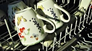 Le lave-vaisselle oui mais pas besoin de prélavage.