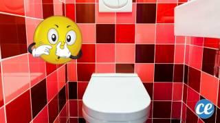 comment enlever l'odeur d'urine dans les toilettes