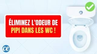 Éliminez l'Odeur de Pipi Dans Vos Toilettes Avec Cette Astuce Géniale