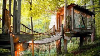 Cette Superbe Maison Dans Les Arbres Ne Vous Laissera Pas De Bois