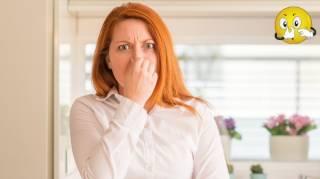 4 Astuces Bicarbonate Contre Les Mauvaises Odeurs à La Maison