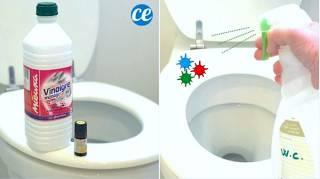Coronavirus : Comment Désinfecter les WC Avec du Vinaigre Blanc
