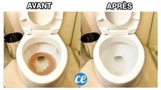 5 Astuces Incroyables Pour Enlever Le Tartre Incrusté Dans Les WC