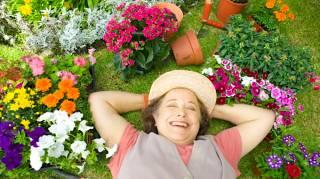 Jardinage : 10 Astuces Que Tous les Débutants Devraient Connaître