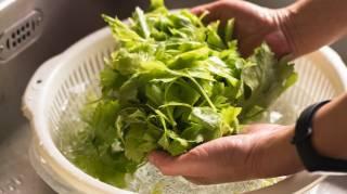 Comment Je Nettoie mes Légumes Sans Gaspiller d'Eau.