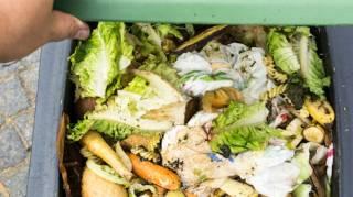 Le gaspillage alimentaire coûte cher alors comment l'éviter?