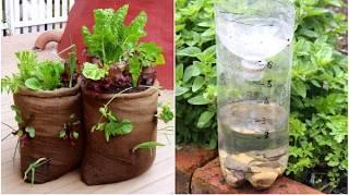 20 Super Idées Récup' Pour Économiser Au Jardin