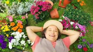 30 Trucs et Astuces de Génie Pour Vous Simplifier le Jardinage