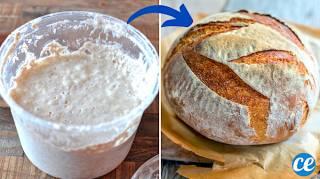 Comment Faire Sa Levure de Boulanger Maison