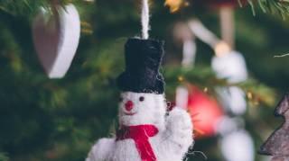 Comment j'ai Récupéré un Sapin de Noël Gratuit pour les Fêtes.